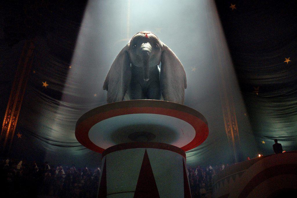 فیلم لایواکشن[42] «دامبو» ساخته تیم برتون[43] که بهزودی اکران خواهد شد بهاحتمالزیاد در بین پیشنهادهای سرویس دیجیتال دیزنی خواهد بود.